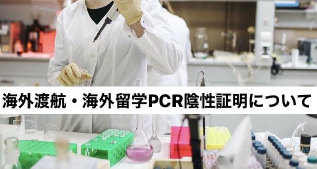 ラボでのPCR検査